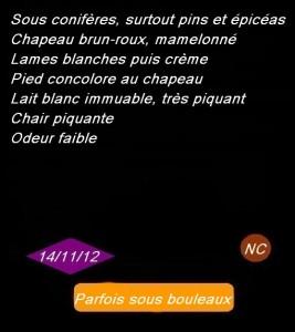 noir3-267x300