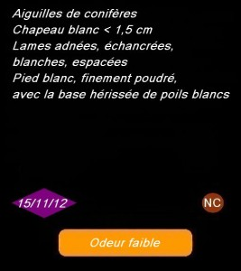noir5-267x300